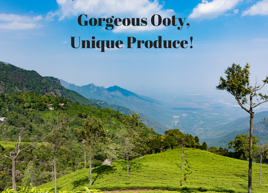 Ooty Produce